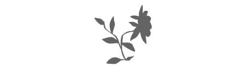 modele botanika